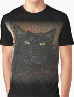 Doorstop Graphic T-Shirt