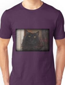 Doorstop Unisex T-Shirt