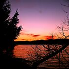 Vancouver Island Sunset by Gail Bridger