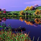 Colorful Pond with flowers and birds by Walter Colvin