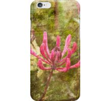 Summer Blossoms iPhone Case/Skin
