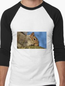 Squirrel Men's Baseball ¾ T-Shirt