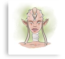 Ancient Elf Canvas Print