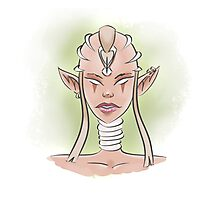 Ancient Elf Photographic Print