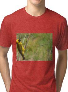 Weaver bird Tri-blend T-Shirt