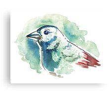 bird - green blue red Canvas Print