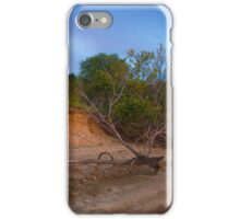 Midwest Beach iPhone Case/Skin