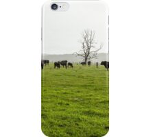 Green Meadow Landscape with Black Cows iPhone Case/Skin