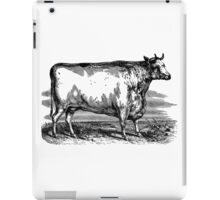 Vintage Durham Bull Cow Illustration Retro 1800s Black and White Cows Image iPad Case/Skin