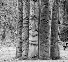 Hiding in Trees Sticker