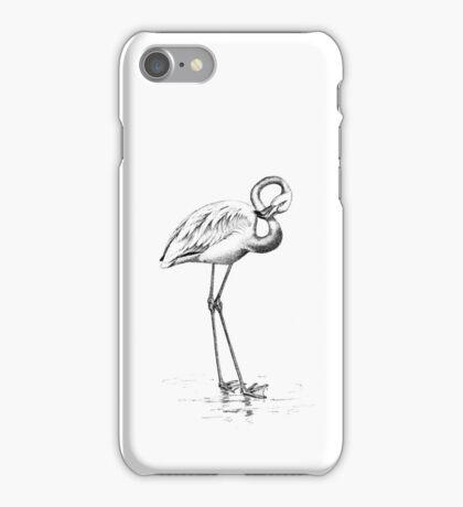 Vintage Flamingo Bird Illustration Retro 1800s Black and White Flamingos Birds Image iPhone Case/Skin