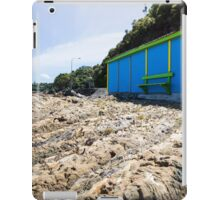 Lone boatshed. iPad Case/Skin