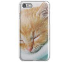 Cozy Kitty iPhone Case/Skin