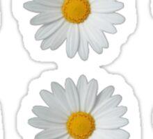 Multiple Daisies Sticker