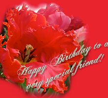 Birthday Special Friend - Red Parrot Tulip by MotherNature