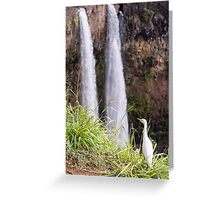 Egret at Wailua Falls Greeting Card