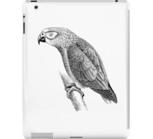 Vintage Gray Parrot Bird Illustration Retro 1800s Black and White Birds Grey Parrots Image iPad Case/Skin
