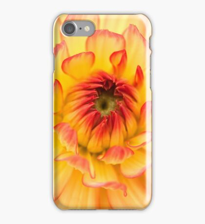 Springtime Golden Flower Petals iPhone Case/Skin