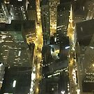 Chicago from the top by chasemarsh