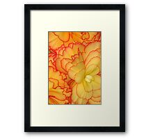 Soft Petal Pattern Abstract Framed Print