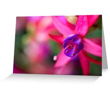 Pink Fuchsia Flower Abstract  Greeting Card