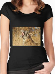 Yawn: Sub-Adult Male Bengal Tiger Women's Fitted Scoop T-Shirt