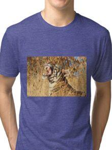 Yawn: Sub-Adult Male Bengal Tiger Tri-blend T-Shirt