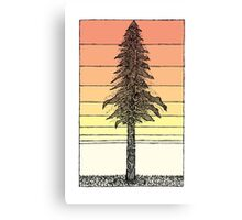 Coastal Redwood Sunset Sketch Canvas Print