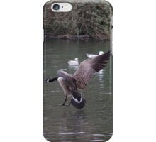 Canada Goose coming in to land iPhone Case/Skin