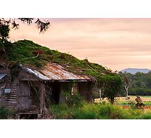 Abandoned farming shed in the country Photographic Print