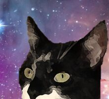 Cat Tongue In Space Sticker