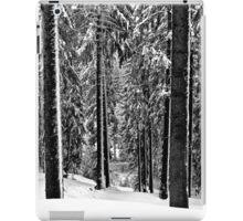 Winter Trees ii - Bulgaria  iPad Case/Skin