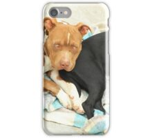 Pair of Dogs iPhone Case/Skin