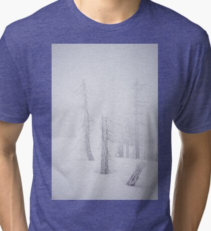 Another World Tri-blend T-Shirt