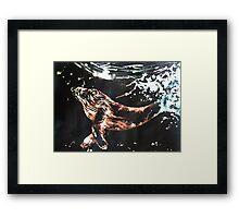 Blue Whale Framed Print