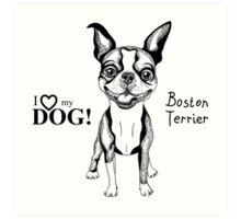 black and white Smiling dog Boston Terrier  Art Print