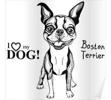 black and white Smiling dog Boston Terrier  Poster