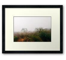 Hailstorm in Savannah Framed Print