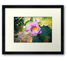 Water lily in pond (vintage) | China  Framed Print