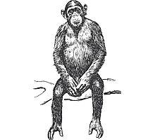 Chimp Champ Photographic Print