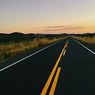 New Highway Through National Park at Sunset Time by visualspectrum