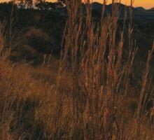 Sunset in Brazilian National Park (Chapada dos Veadeiros, Goias) Sticker