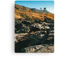 River Flowing Through Dry Grassland (Chapada dos Veadeiros NP, Brazil) Canvas Print