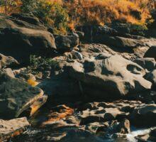 River Flowing Through Dry Grassland (Chapada dos Veadeiros NP, Brazil) Sticker