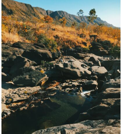 River Flowing Through Dry Grassland (Chapada dos Veadeiros NP, Brazil) Sticker