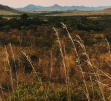 Dry Landscape in Brazilian State of Goias - National Park Chapada dos Veadeiros Sticker
