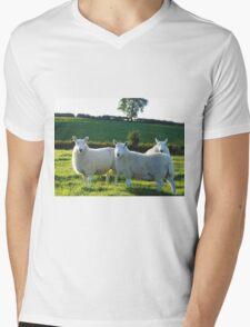 Beautifull Sheep Mens V-Neck T-Shirt