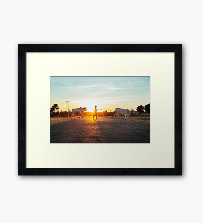 Silhouette of Boy Leading Cattle Across Road at Sunset in Burmese Countryside Framed Print