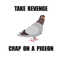 Revenge Pigeon Photographic Print