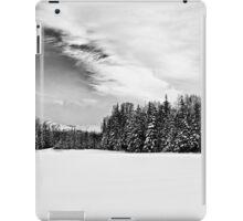 BW Fresh Snow iPad Case/Skin